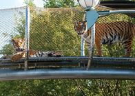 High Durability Stainless Steel Wire Rope Mesh For Zoo Big Cat Crossing